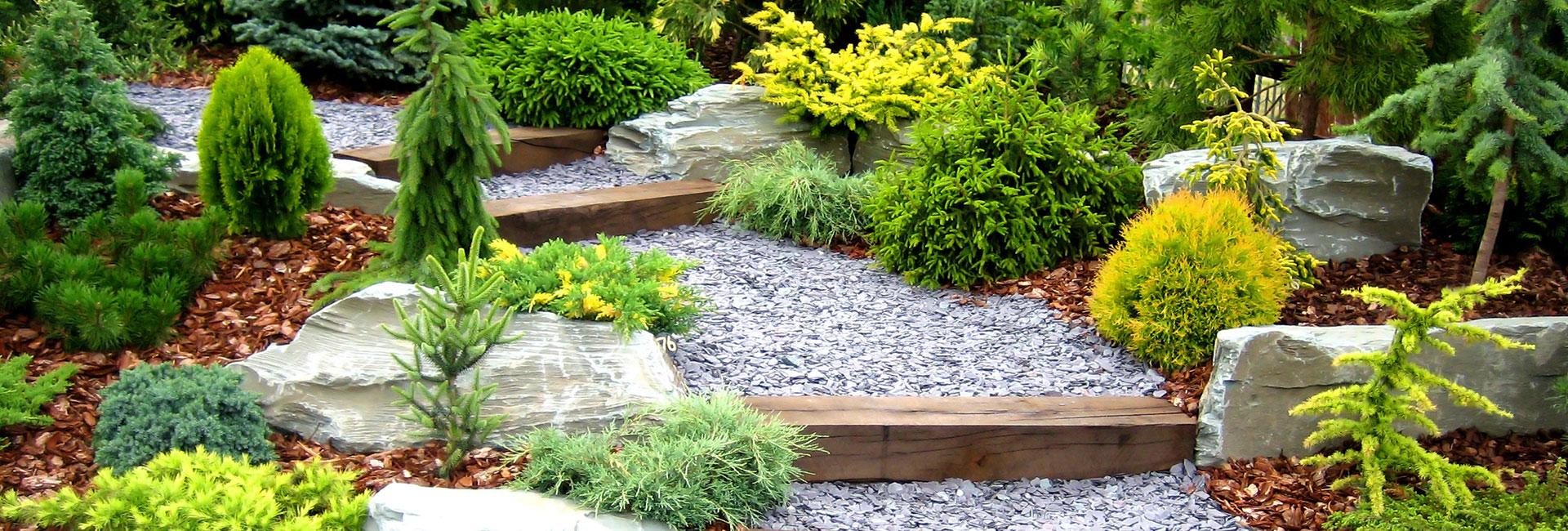 Realizzazione giardini il giardino del re for Soluzioni zanzare giardino